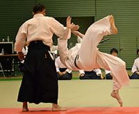 Adults Participating in Aikido